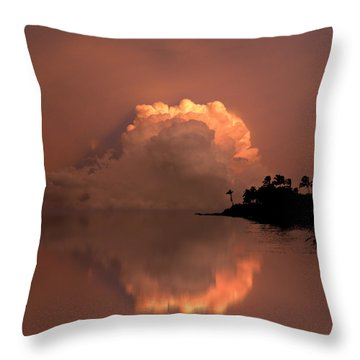 4186 Throw Pillow
