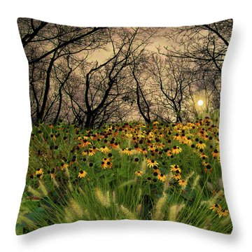 4209 Throw Pillow by Peter Holme III