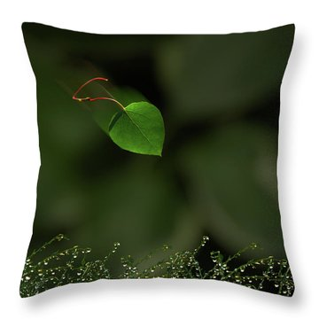 Throw Pillow featuring the photograph 4361 by Peter Holme III