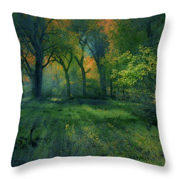 Throw Pillow featuring the photograph 4363 by Peter Holme III