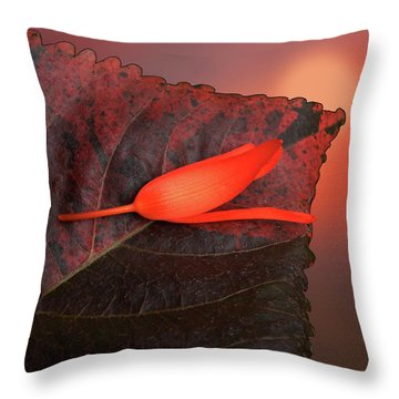 Throw Pillow featuring the photograph 4366 by Peter Holme III