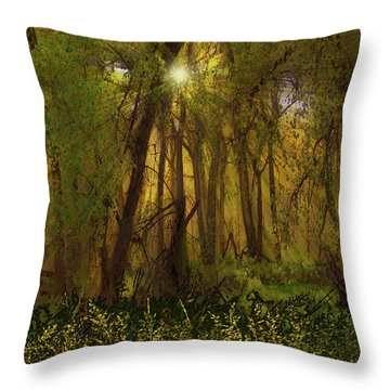 Throw Pillow featuring the photograph 4368 by Peter Holme III