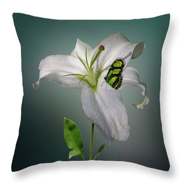 Throw Pillow featuring the photograph 4371 by Peter Holme III