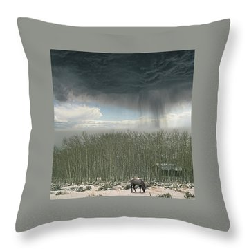 Throw Pillow featuring the photograph 4375 by Peter Holme III