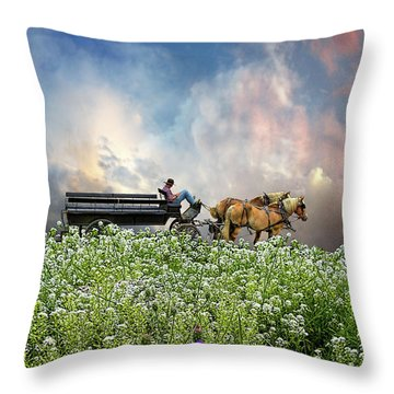 Throw Pillow featuring the photograph 4376 by Peter Holme III