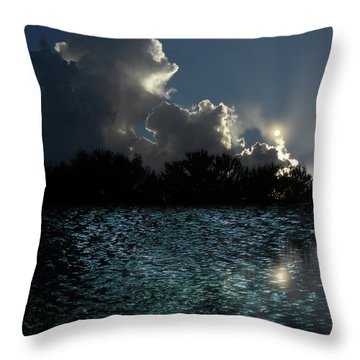 Throw Pillow featuring the photograph 4377 by Peter Holme III