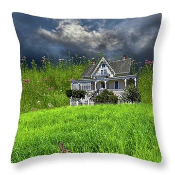 Throw Pillow featuring the photograph 4379 by Peter Holme III
