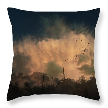 Throw Pillow featuring the photograph 4382 by Peter Holme III