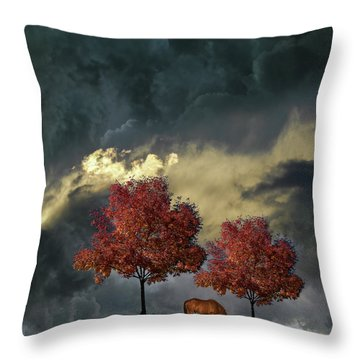 Throw Pillow featuring the photograph 4384 by Peter Holme III