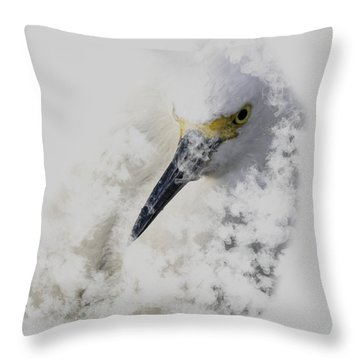 Throw Pillow featuring the photograph 4386 by Peter Holme III