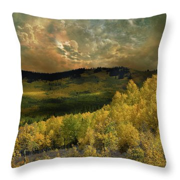 Throw Pillow featuring the photograph 4394 by Peter Holme III