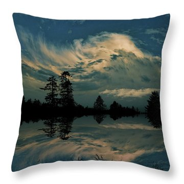 Throw Pillow featuring the photograph 4395 by Peter Holme III