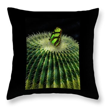 Throw Pillow featuring the photograph 4409 by Peter Holme III