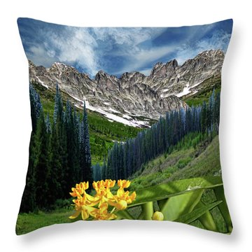 Throw Pillow featuring the photograph 4415 by Peter Holme III
