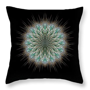 Throw Pillow featuring the photograph 4418 by Peter Holme III