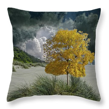 Throw Pillow featuring the photograph 4422 by Peter Holme III