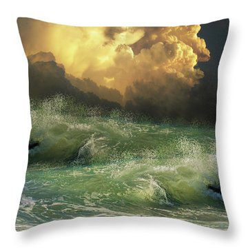 Throw Pillow featuring the photograph 4449 by Peter Holme III