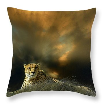 Throw Pillow featuring the photograph 4452 by Peter Holme III