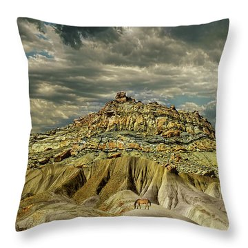 Throw Pillow featuring the photograph 4453 by Peter Holme III