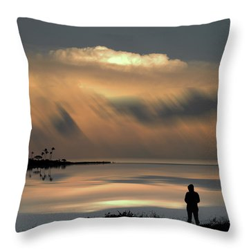 Throw Pillow featuring the photograph 4459 by Peter Holme III
