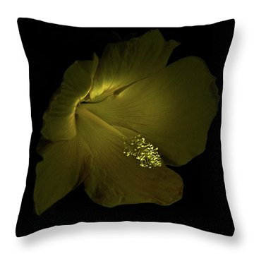 Throw Pillow featuring the photograph 4460 by Peter Holme III