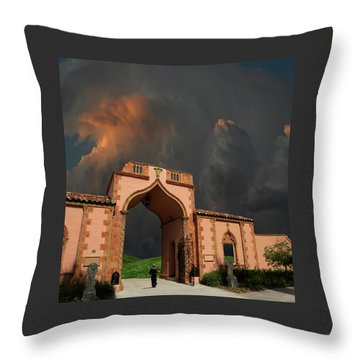 Throw Pillow featuring the photograph 4470 by Peter Holme III