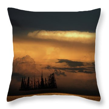 Throw Pillow featuring the photograph 4476 by Peter Holme III