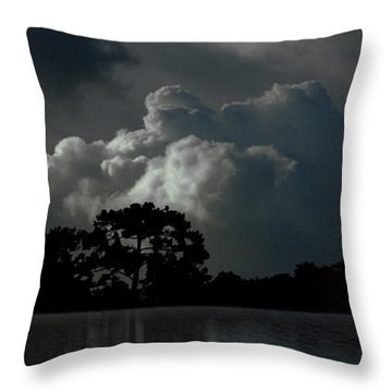 Throw Pillow featuring the photograph 4477 by Peter Holme III