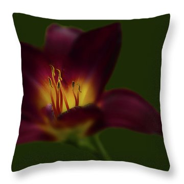 Throw Pillow featuring the photograph 4479 by Peter Holme III