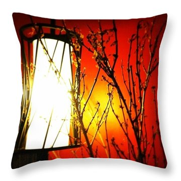 Asian Mood Throw Pillow by Joan McCool