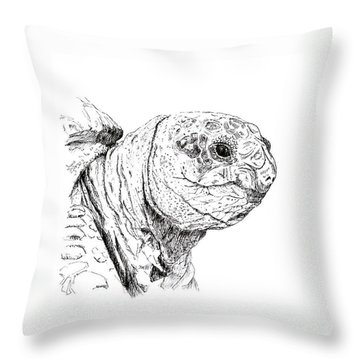 Turtle Throw Pillow by Merry Inst