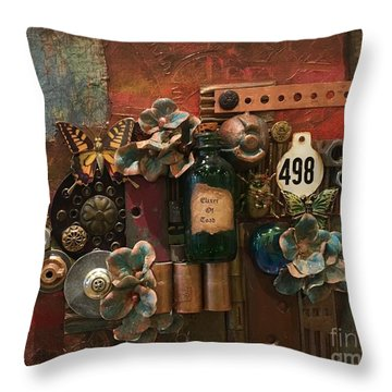 498 Throw Pillow