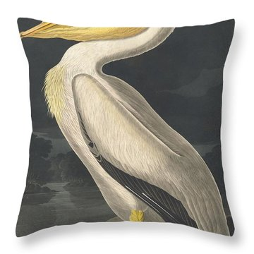 American White Pelican Throw Pillow by Anton Oreshkin