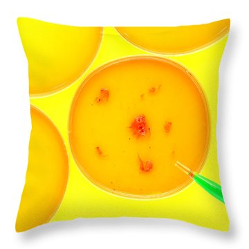 Biotechnology Experiment In Science Research Lab Throw Pillow