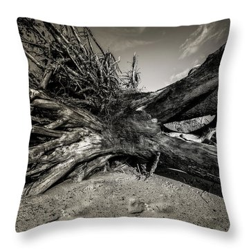 Throw Pillow featuring the photograph Black Rock Beach by Peter Lakomy
