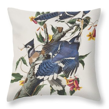 Blue Jay Throw Pillow by John James Audubon