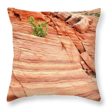 Throw Pillow featuring the photograph Colorful Wash In Valley Of Fire by Ray Mathis
