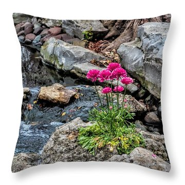 Throw Pillow featuring the photograph Dallas Arboretum by Diana Mary Sharpton