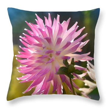 Throw Pillow featuring the photograph Flower Edition by Bernd Hau