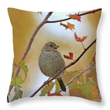 Golden-crowned Sparrow Throw Pillow