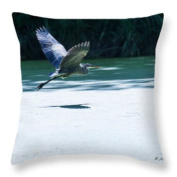 Great Blue Heron In Flight Throw Pillow by Edward Peterson