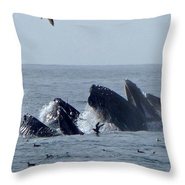 5 Humpbacks Lunge Feeding  Throw Pillow