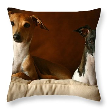 Italian Greyhounds Throw Pillow by Angela Rath