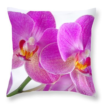 Throw Pillow featuring the photograph Pink Orchid by Dariusz Gudowicz