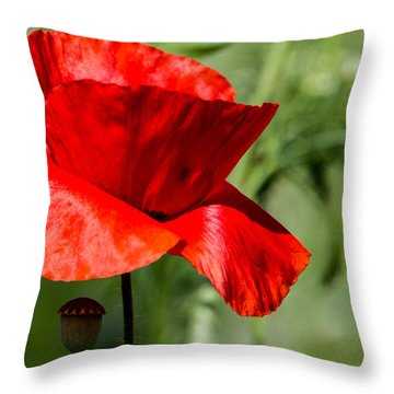 Poppy Throw Pillow