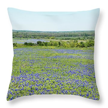 Texas Bluebonnets 10 Throw Pillow