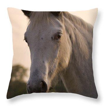 The Horse Portrait Throw Pillow by Angel  Tarantella