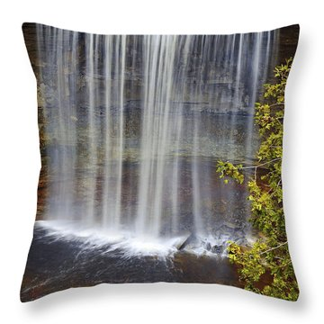 Waterfall Throw Pillow by Elena Elisseeva