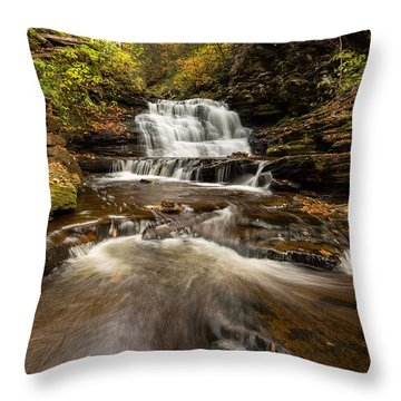 Ricketts Glen State Park Pennsylvania Throw Pillow