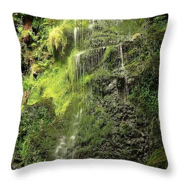Waterfall Throw Pillow by Svetlana Sewell